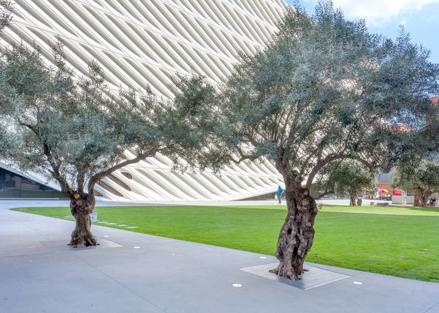 Broad Museum, Los Angeles